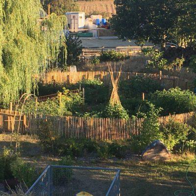 Permanaissance: Conseils et aménagements de votre jardin «permacole»